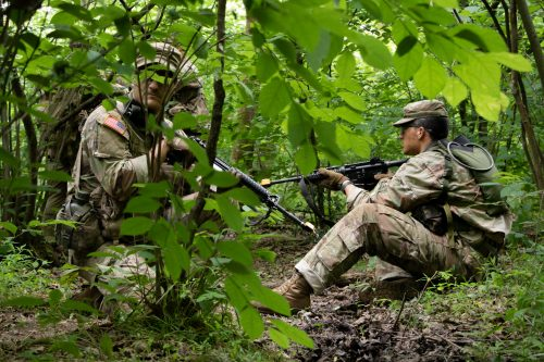 """Field Training Exercise (FTX): """"Playing Army in the Woods"""""""