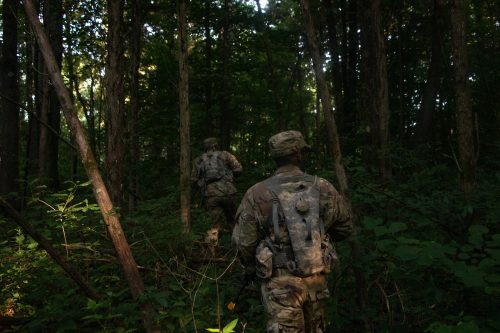 Basic Camp FTX: highlighting strengths and weaknesses